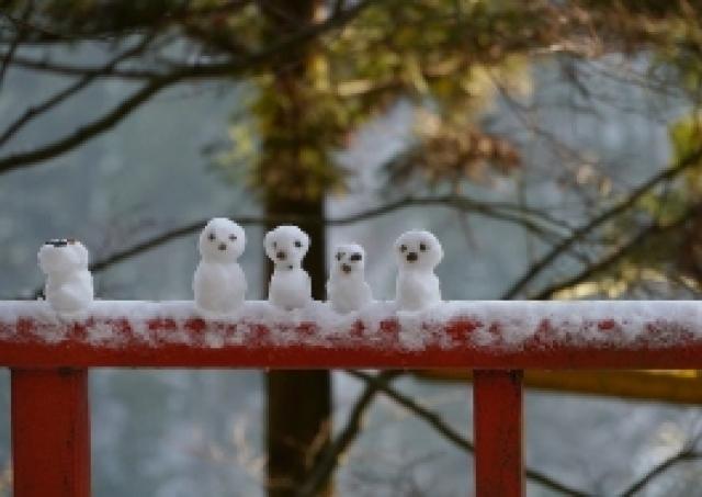 雪道で転ぶ人 その共通点とは?