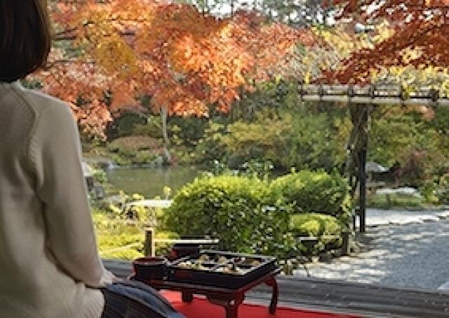 京都の紅葉と楽しむミシュラン星付き御膳 妙心寺退蔵院の特別拝観