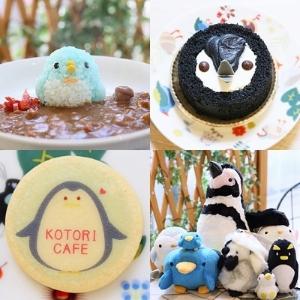 今度はペンギンのカレーとケーキ ことりカフェで「夏のペンギン祭り」