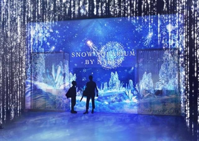 世にも美しい「氷のアクアリウム」へようこそ 水族館とプロジェクションマッピングが織りなす新世界
