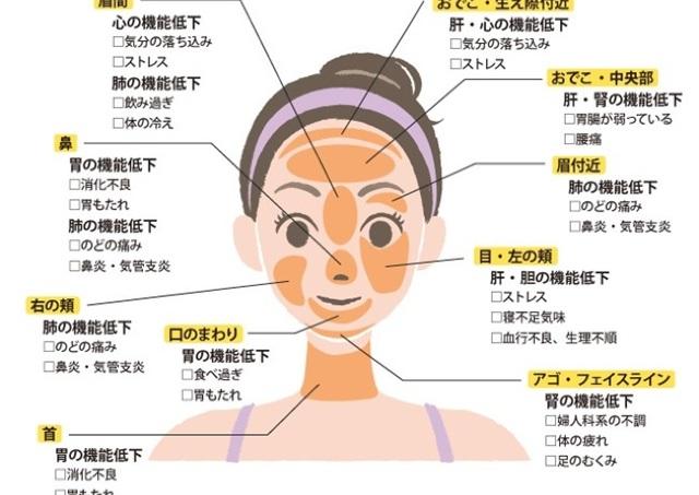 ニキビ・吹き出物の場所で体の不調がわかる 「肌トラブル⇔内臓」相関図
