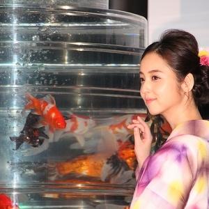 浴衣姿の佐々木希が金魚にうっとり アートアクアリウム10周年記念祭