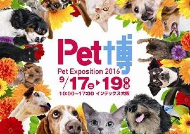 【プレゼント】動物好きお待ちかねの参加・体験型イベント「Pet博2016 大阪」ご招待(10組20名様)
