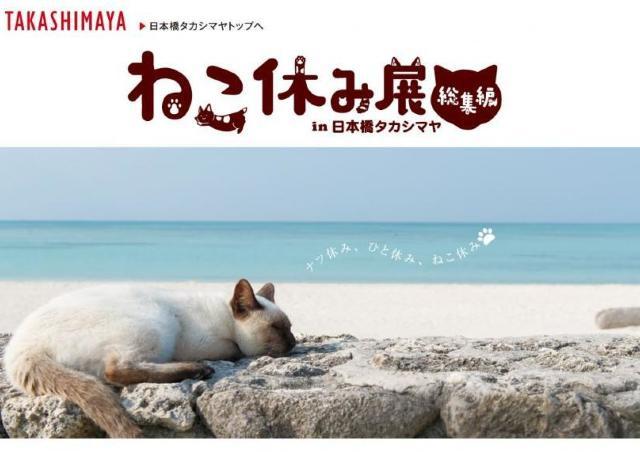 500以上のにゃんこ写真に癒される... 「ねこ休み展」日本橋タカシマヤでスタート