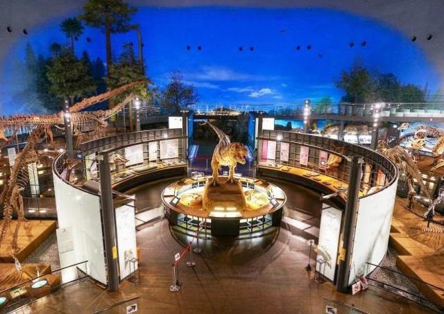 福井県立恐竜博物館で異色のウエディング! 2組限定でカップル募集中