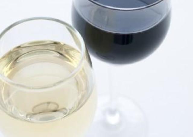 ワイン1000種以上が集結! 日本最古のワインフェス「世界の酒とチーズフェスティバル」