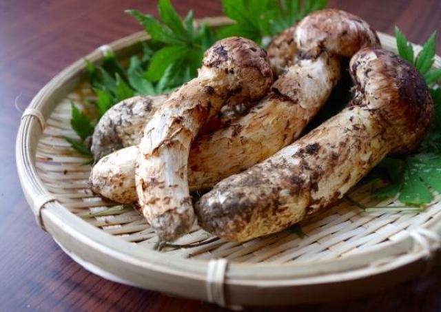 サンマ、マツタケ... 9月の「秋の食材」検索ランキング