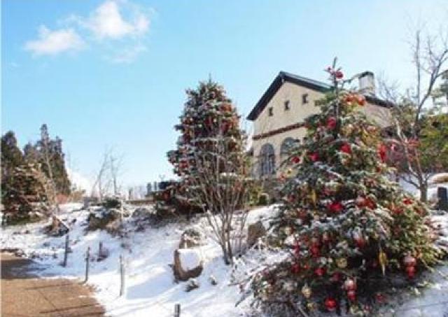 ヨーロッパの雰囲気がロマンチック 「六甲ガーデンテラスのクリスマス」