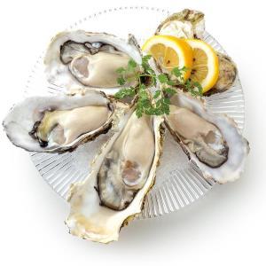 3日間限定で「生ガキ」半額! 外食の日&牡蠣の日はオイスターバーへGO