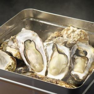 六本木で1000円でカキ食べ放題 1日10組限定の「牡蠣のガンガン蒸し」
