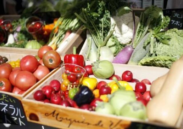 広島パルコが新鮮野菜あふれる青空市場に「ひろしまみなとマルシェ」