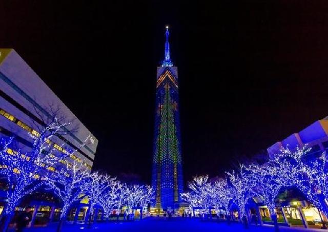 福岡タワーに108メートルのXmasツリー!イルミネーションも幻想的