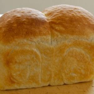 ちょ、ちょっと待って! 本物と見分けがつかないコーギーのかわいい「おしりパン」が話題に