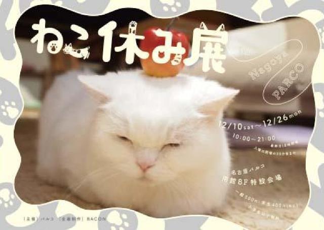全国で話題沸騰中の展覧会「ねこ休み展」名古屋パルコに登場!