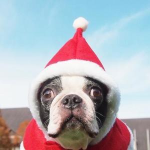 なんて日だ!! 思い出したくもない「最悪のクリスマス」エピソード9つ