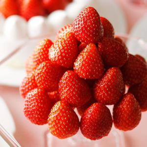 ホテルでイチゴ狩り! 昨年2万人が参加したイチゴづくしのブッフェがスタート
