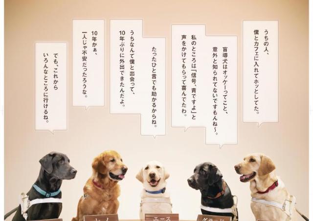 かわいい「盲導犬会議」ポスターが話題 その背景には悲しい現実も......