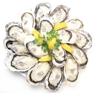 カキ全品半額! ゼネラル・オイスターの「生牡蠣半額祭」でプリプリ牡蠣を楽しもう