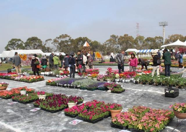 花の祭典がことしも帰ってきた!「2017宇城市フラワーフェスタ」