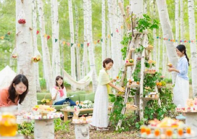 かわいい!森のお茶会へようこそ