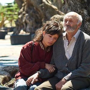 映画「オリーブの樹は呼んでいる」/祖父のため樹齢2000年のオリーブの樹を取り戻す