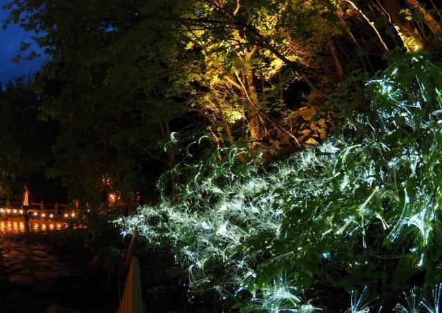 定山渓の自然を生かした美しいライトアップがスタート!