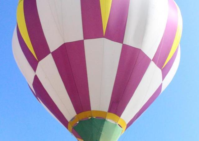 気球に乗って空高く! オリーブ園で搭乗体験