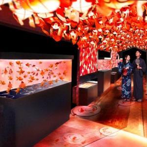 1000匹の金魚がゆらゆら舞う すみだ水族館で金魚づくしの夏祭り