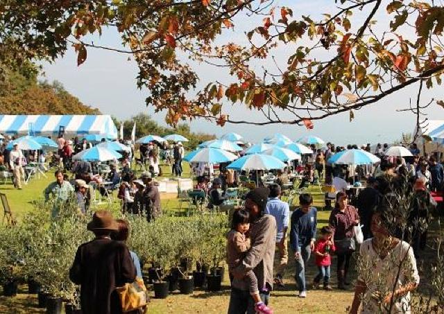 パエリアの無料提供も! 年に一度の「牛窓オリーブ園収穫祭」