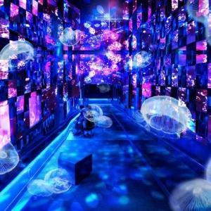 「銀河鉄道の夜」の世界観を体感 すみだ水族館で幻想的なイベント