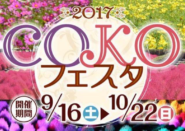 コスモス、コキアが咲き誇る! 蔵王連峰をバックに楽しむ「COKOフェスタ」