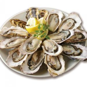 生牡蠣が全品半額だー! ゼネラル・オイスターが秋セール開催
