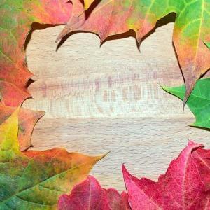 秋の味覚は「調理法」がカギ! 効果的にアンチエイジングする方法