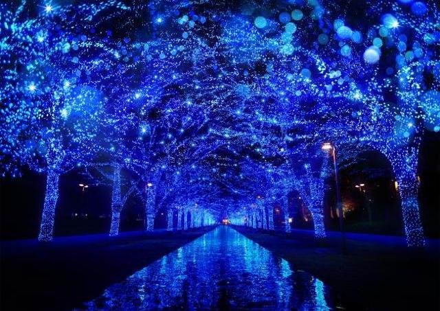渋谷で幻想的なイルミ散歩 人気イベント「青の洞窟」今年も開催