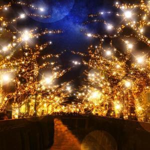 目黒川沿いをライトアップ! 2色で彩る「NAKAMEGURO JEWEL DOME」