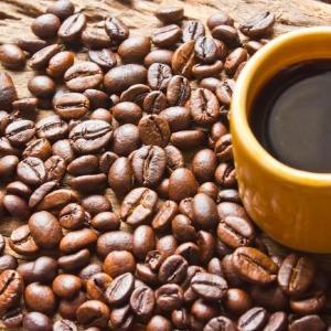 本格コーヒーが50円!? 電源&Wi-Fiも完備した最強カフェが誕生