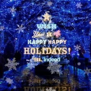 【行かなきゃ】渋谷イルミ「青の洞窟」にクリスマスツリーが登場中!