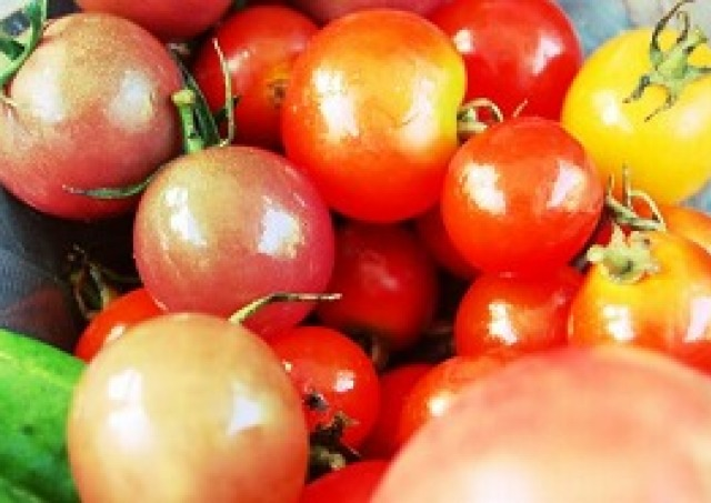「トマト」「じゃがいも」値上がり野菜 イオンが特別価格に!