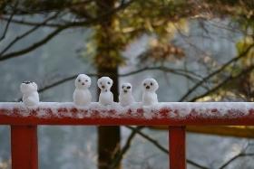 雪の日は、おしゃれをお休み