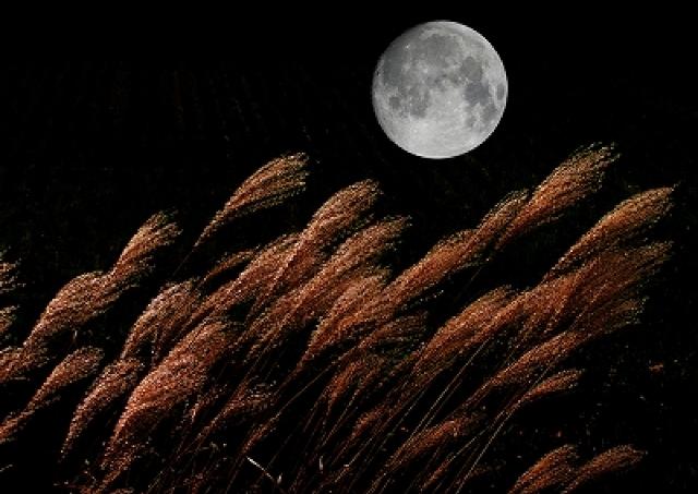 恋愛×サプライズ#19 今年の「中秋の名月」は大チャンス 恋愛力を引き付ける満月デートへ