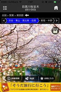 s-hanamiapri01-0328.jpg