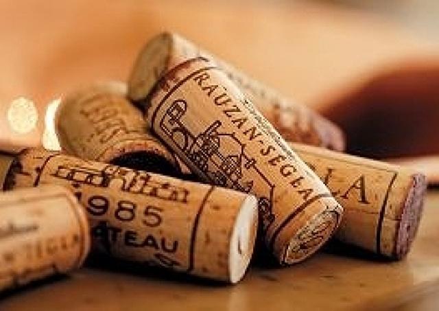 世界のワイン50種ずらり 自分で注いで試飲できる幕張の「WINE EXPO」
