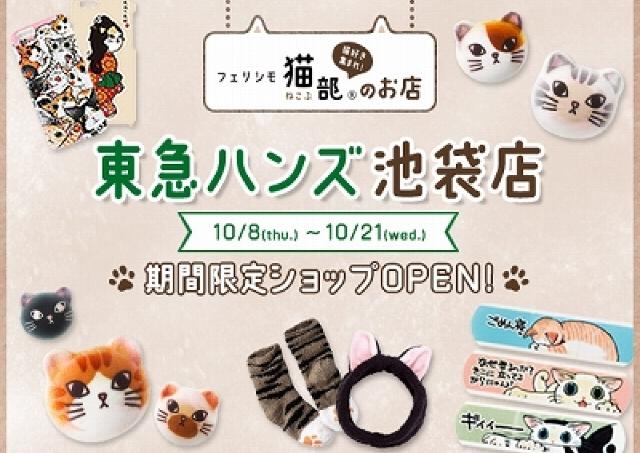 ネコ布団もハロウィンのニャシュマロも買えちゃいます! フェリシモ猫部リアルショップが東京各地に緊急出店