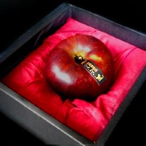バレンタインには毒リンゴを 魔女監修「愛の願掛け毒リンゴ」キット