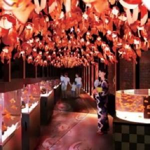 ひらひらと舞う金魚に癒される すみだ水族館の「お江戸の金魚ワンダーランド」