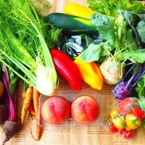 【野菜の日】いくつ食べたことある? 世界の珍しい野菜たち7選