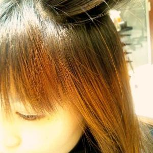 【髪トラブル多発】毎日シャンプーでこんなことになるなんて...