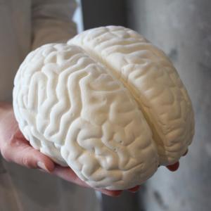 これは欲しい...「脳みそマシュマロ(非売品)」 パパブブレの特典付きハロウィン
