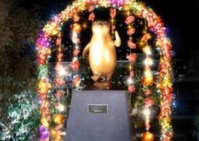 新宿「Suica ペンギン広場」が光る!光る!光る!! 幻想的な花イルミはバレンタインまで
