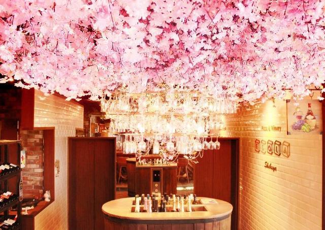 渋谷のお花見バル「ESOLA」 世界各国のワイン約100種が1990円で飲み放題!